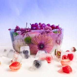 Ice bowl and food styling.