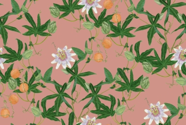 Passiaflora pattern I designed for a University project collaboration with Blendworth, based on the theme of Heritage.