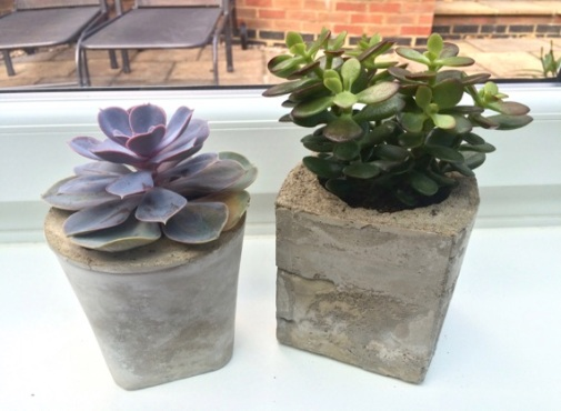 DIY planters made from concrete.