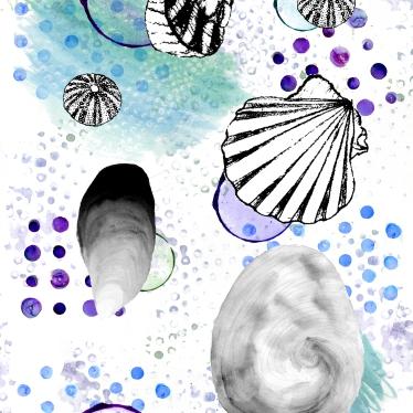 shell-pattern