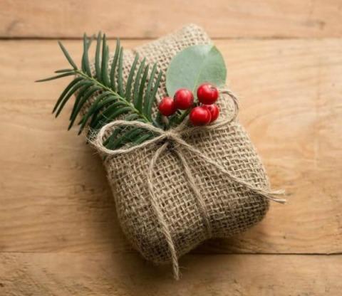COMP-eco-friendly-christmas-portrait