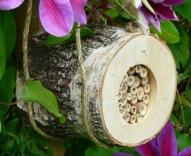 294189-pollinating-bee-log-11