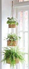 365689-three-tier-hanging-basket